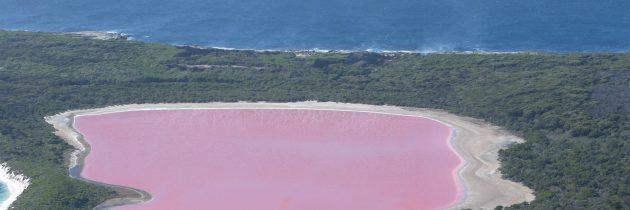 Un lac rose en Australie – le lac Hillier