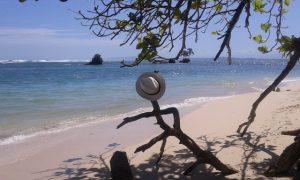 isla-zapatilla-bocas-del-toro_32233541451_o