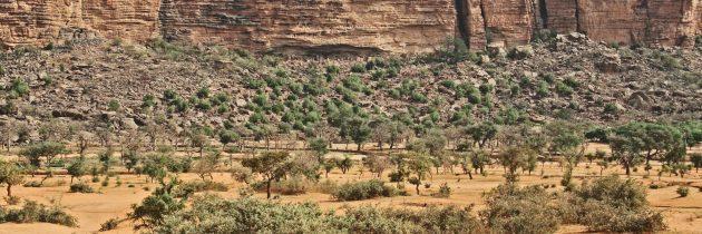 Préparer un voyage au Mali en 2018