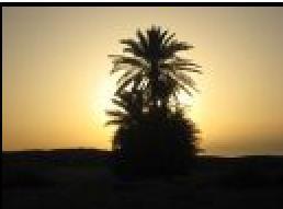 Que des beaux souvenirs à Djerba !