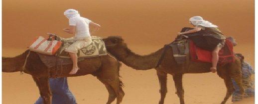 Expéditions Berbères vous accueille dans le désert et la montagne !!!