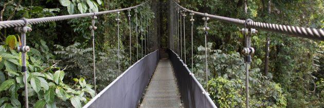 Suivre les sentiers battus dans les parcs nationaux au Costa Rica