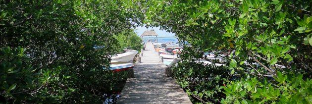 5 bonnes raisons de partir au Mexique pour ses vacances
