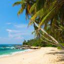 En route pour le Sri Lanka, une île envoûtante d'Asie