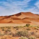 Découvrir la Namibie