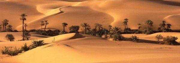 Le Maroc : Un désert pas comme les autres