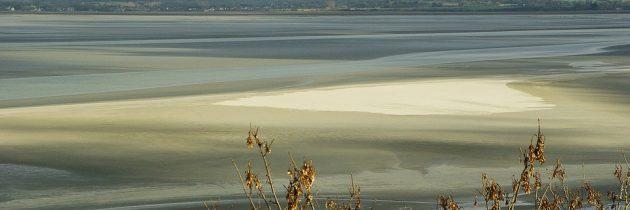 Assurer des vacances réussies sur les plages de Basse-Normandie