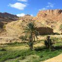 Tunisie : le top 5 des randonnées à découvrir !